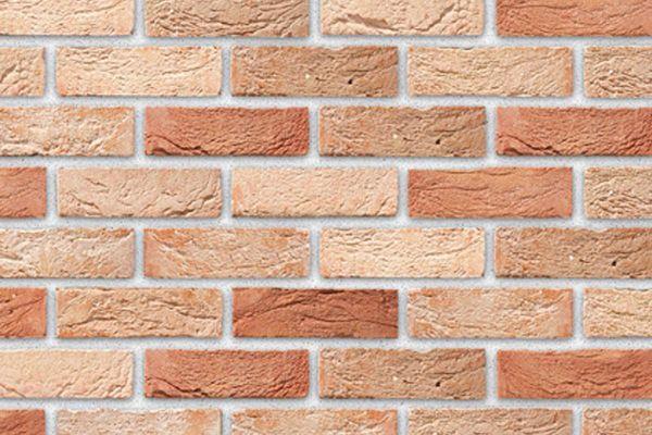 Handform-Klinker / Verblender BK-103-169-WDF (Waaldickformat-Klinkerstein (WDF)) beige - rot