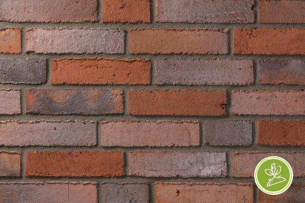 Wasserstrich-Klinker / Verblender BK-111-114-RF (Reichsformat-Klinkerstein (RF)) rot - braun - bunt