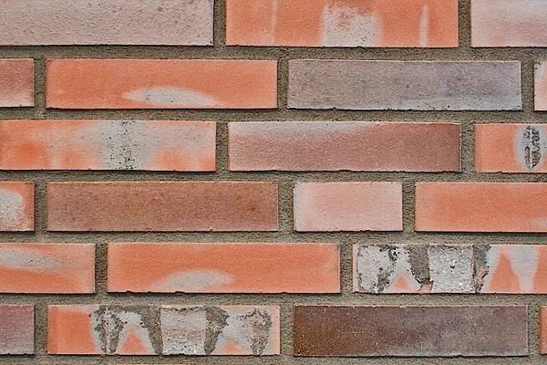 Strangpress-Klinker / Verblender BK-108-149-DF rot-bunt Dünnformat (DF)