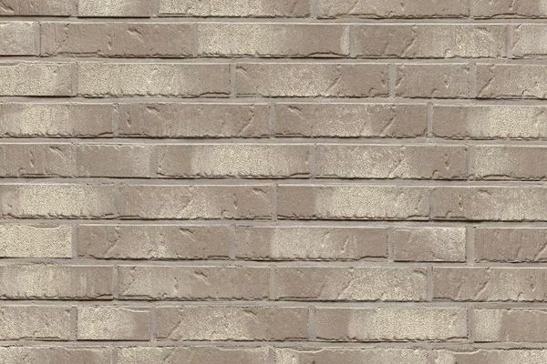 Strangpress-Riemchen BK-R-101-07 (Dünnformat (DF)) grau - beige nuanciert (Klinkerriemchen)